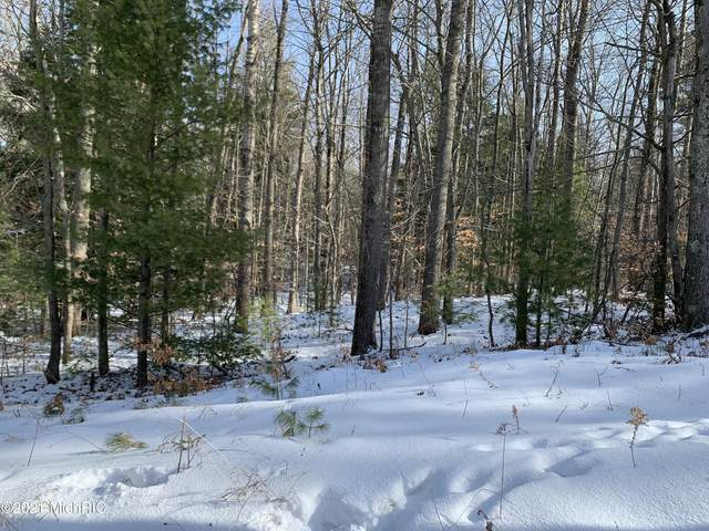 2990 N Lincoln Road, Ludington, MI 49431 (MLS #21002440) :: JH Realty Partners