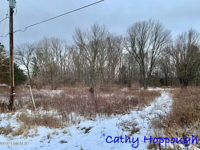 0 Prairie View Lot A Drive, Ionia, MI 48846 (MLS #21002859) :: Your Kzoo Agents