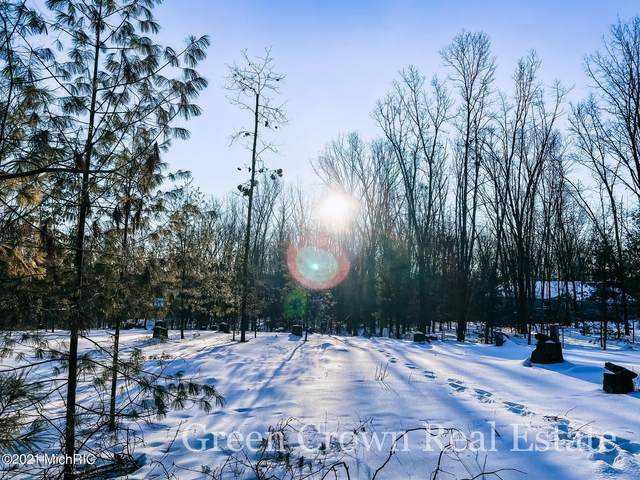 9489 Annie Lane, Newaygo, MI 49337 (MLS #21003648) :: BlueWest Properties