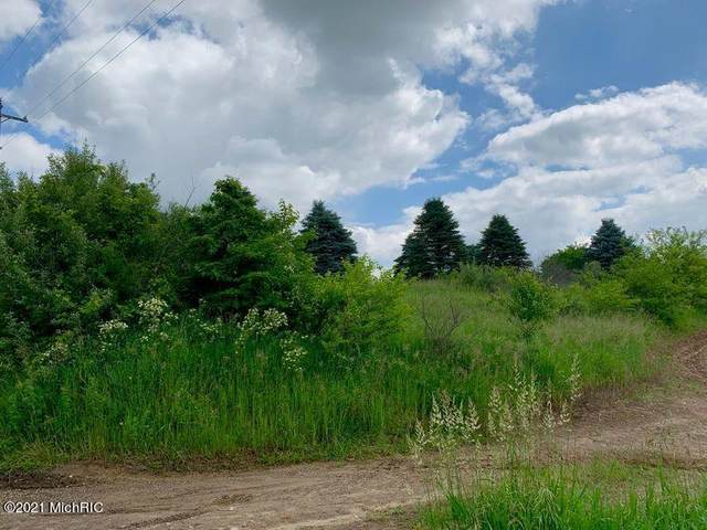 East Avenue N, Battle Creek, MI 49017 (MLS #21003798) :: Deb Stevenson Group - Greenridge Realty