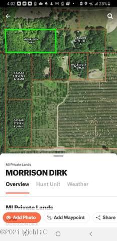Mud Lake Road, Bear Lake, MI 49614 (MLS #21004097) :: Deb Stevenson Group - Greenridge Realty