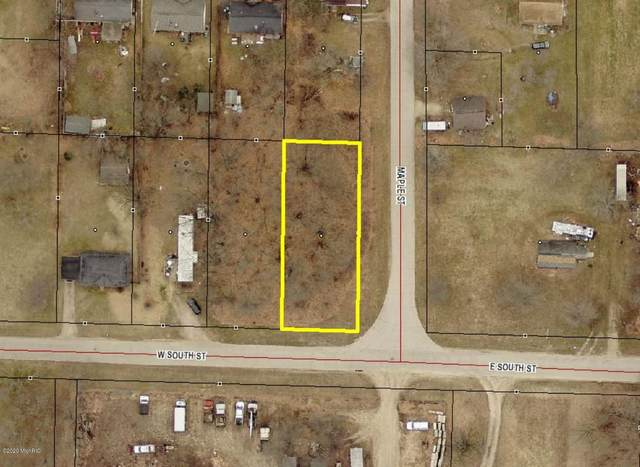 W V/L South, Lot 5 Street, Decatur, MI 49045 (MLS #21004819) :: Your Kzoo Agents