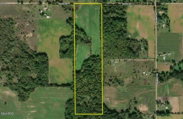 Mauck Road, Hillsdale, MI 49242 (MLS #21005921) :: Deb Stevenson Group - Greenridge Realty