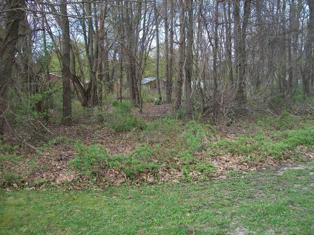 306 & 310 Arnstrom Drive, Gobles, MI 49055 (MLS #21006203) :: Your Kzoo Agents