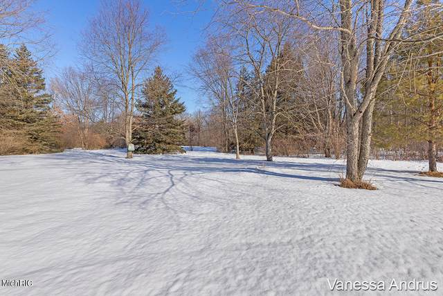3455 18 Mile Road NE, Cedar Springs, MI 49319 (MLS #21006323) :: JH Realty Partners