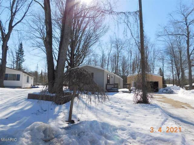 311 Arbutus Avenue, Cadillac, MI 49601 (MLS #21006623) :: Your Kzoo Agents
