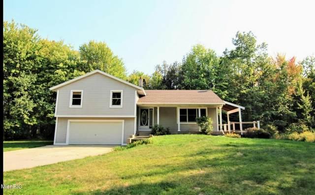 11352 Wilson Road, Nunica, MI 49448 (MLS #21006669) :: BlueWest Properties