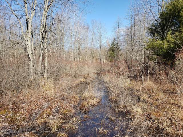 71302 County Road 378, Covert, MI 49043 (MLS #21006825) :: BlueWest Properties