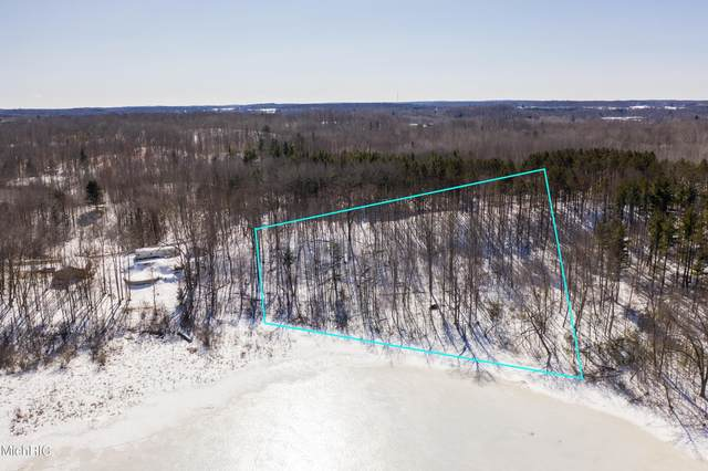 Parcel E S Hillview Lake Drive, Rodney, MI 49342 (MLS #21006937) :: Your Kzoo Agents