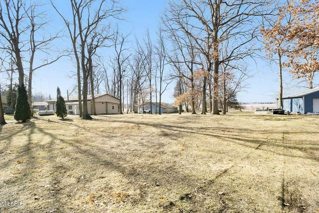 504 Turtle Lake Road, Union City, MI 49094 (MLS #21007010) :: CENTURY 21 C. Howard