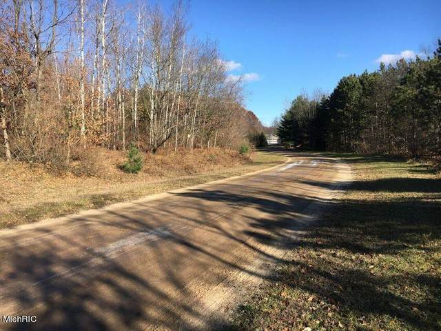 125-Lot 32 W Adams Road, Pentwater, MI 49449 (MLS #21007133) :: Deb Stevenson Group - Greenridge Realty