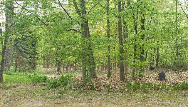 0 Shari Drive Lot 13, Whitehall, MI 49461 (MLS #21007308) :: Your Kzoo Agents