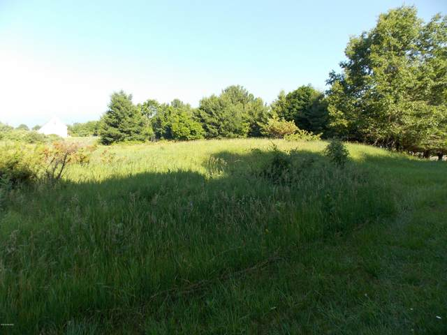 VL Lakeshore Drive, Ludington, MI 49431 (MLS #21007471) :: Deb Stevenson Group - Greenridge Realty