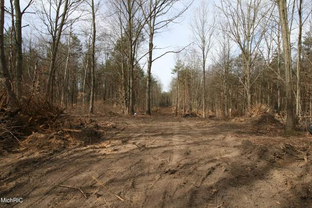 A 58th Street, Fennville, MI 49408 (MLS #21007842) :: Your Kzoo Agents