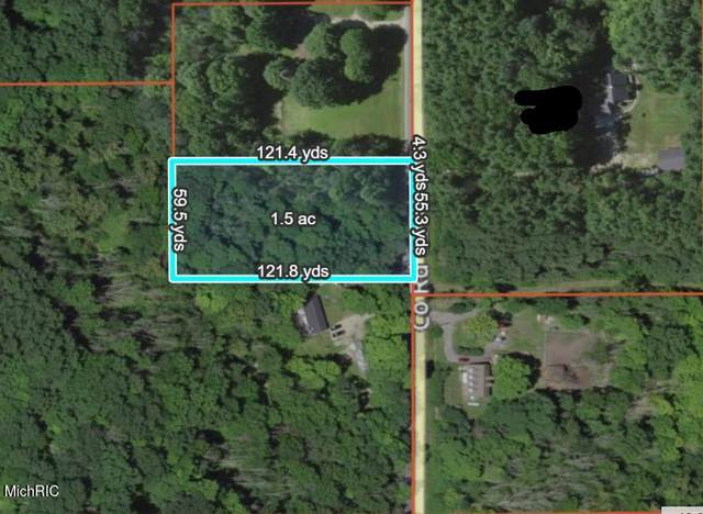 Vl Cr 687, South Haven, MI 49090 (MLS #21008856) :: JH Realty Partners