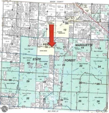 14187 Woods Trail, Thompsonville, MI 49683 (MLS #21009142) :: CENTURY 21 C. Howard