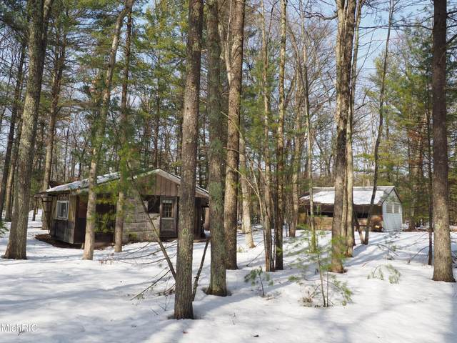 353 N Kettle Hole Road, Manistee, MI 49660 (MLS #21009364) :: CENTURY 21 C. Howard