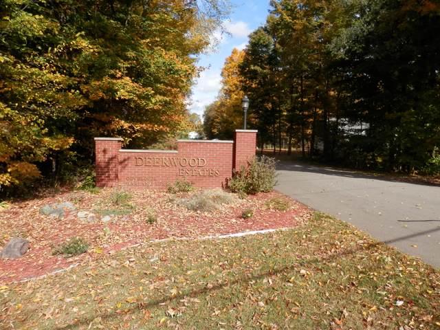 21 Harlan Drive, Watervliet, MI 49098 (MLS #21009714) :: Keller Williams Realty | Kalamazoo Market Center