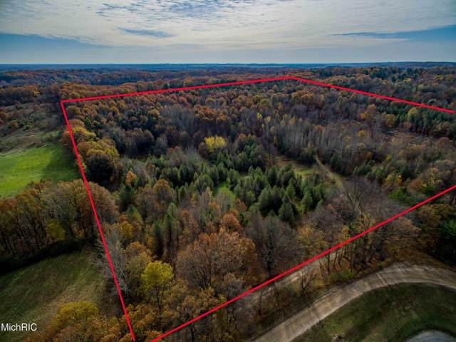 V/L-40 Acres Yale Road, New Era, MI 49446 (MLS #21009970) :: Keller Williams Realty | Kalamazoo Market Center