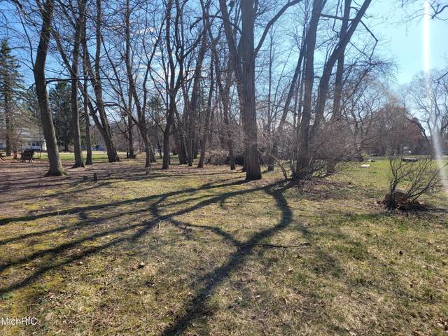 Lot A Jefferson Street, Newaygo, MI 49337 (MLS #21010165) :: Your Kzoo Agents