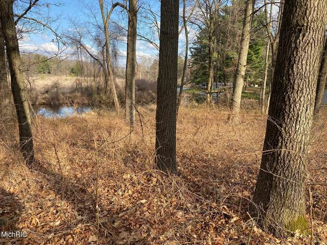 Saunders Shores Road #1, White Pigeon, MI 49099 (MLS #21010176) :: Deb Stevenson Group - Greenridge Realty