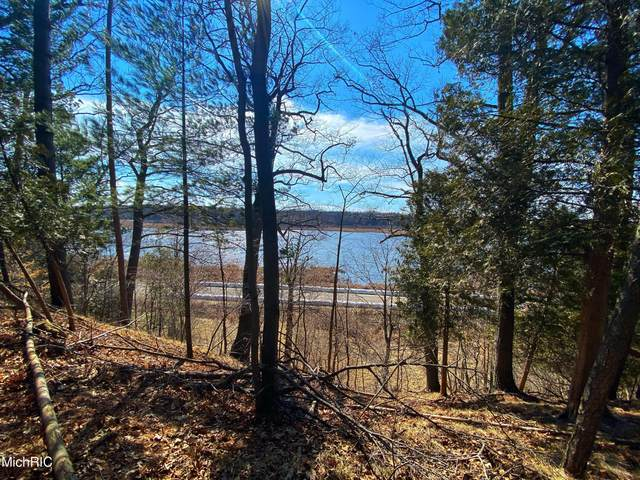 Smugglers Pass Lot 13, Pentwater, MI 49449 (MLS #21010457) :: Deb Stevenson Group - Greenridge Realty