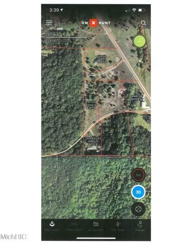 River Road, Brethren, MI 49619 (MLS #21010540) :: Keller Williams Realty | Kalamazoo Market Center
