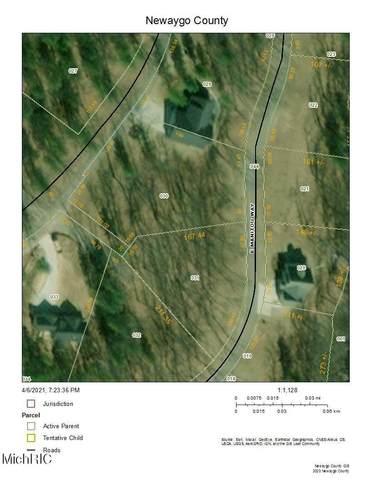 5274 E Manitou Way #30, Newaygo, MI 49337 (MLS #21011098) :: Keller Williams Realty | Kalamazoo Market Center