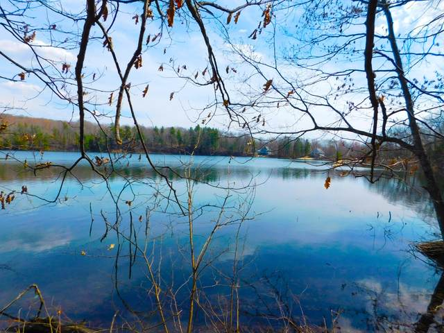 11120 Glovers Lake Ln., Bear Lake, MI 49614 (MLS #21011245) :: Deb Stevenson Group - Greenridge Realty