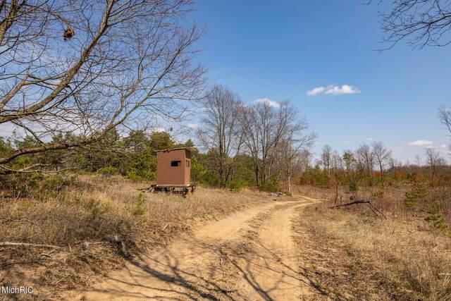 V/L Mackinaw Trail, Tustin, MI 49688 (MLS #21011279) :: Deb Stevenson Group - Greenridge Realty