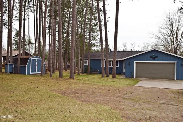 11743 Woodland Drive, Evart, MI 49631 (MLS #21011365) :: Keller Williams Realty | Kalamazoo Market Center