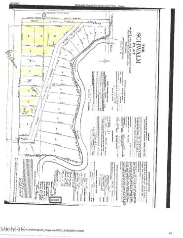 00 Maple Drive Lot 21, Reed City, MI 49677 (MLS #21011586) :: Your Kzoo Agents
