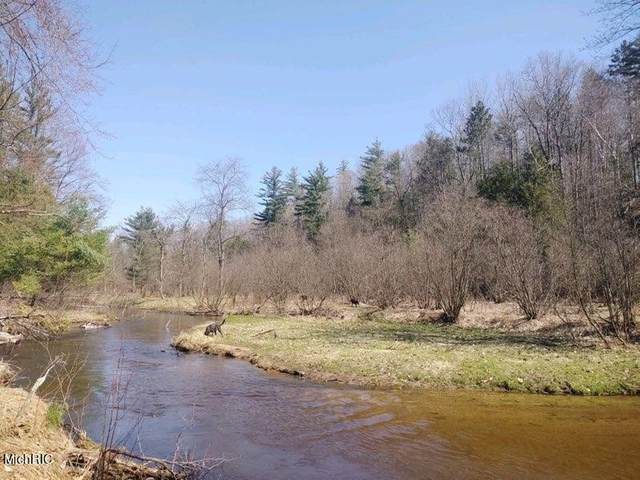 V/L 10 Acres Horseshoe Bend Road, Manistee, MI 49660 (MLS #21011714) :: Deb Stevenson Group - Greenridge Realty