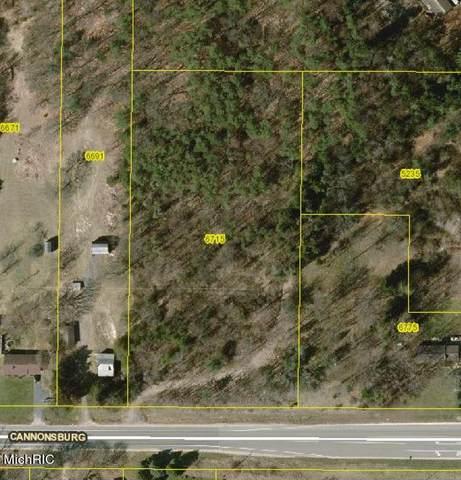 6715 Cannonsburg Road NE, Belmont, MI 49306 (MLS #21011847) :: Ginger Baxter Group
