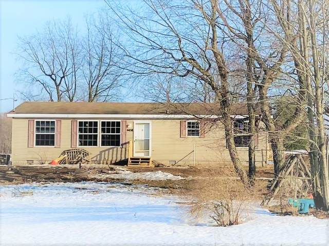 4458 Vista Valley Trail, Mesick, MI 49668 (MLS #21011916) :: Your Kzoo Agents