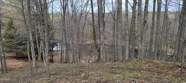 V/L 80 A N Tuttle, Free Soil, MI 49411 (MLS #21012223) :: Deb Stevenson Group - Greenridge Realty