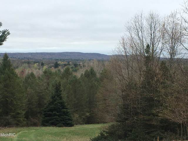 W Deer Rd, Mears, MI 49436 (MLS #21012641) :: Your Kzoo Agents