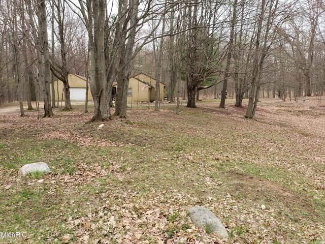 6779 Woods Trail, Custer, MI 49405 (MLS #21012698) :: Deb Stevenson Group - Greenridge Realty