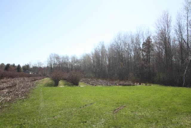 0 Holton, Twin Lake, MI 49457 (MLS #21012755) :: Your Kzoo Agents
