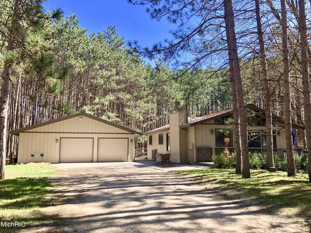 12390 Pine Mesa Drive, Canadian Lakes, MI 49346 (MLS #21012867) :: Your Kzoo Agents