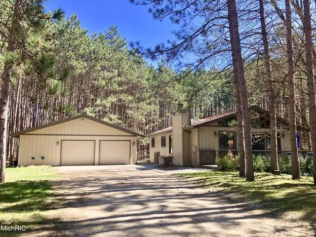 12390 Pine Mesa Drive, Canadian Lakes, MI 49346 (MLS #21012867) :: Keller Williams Realty | Kalamazoo Market Center