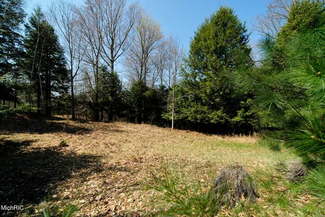 Parcel 14 & 14-A Valleyview Drive, Onekama, MI 49675 (MLS #21012881) :: Your Kzoo Agents