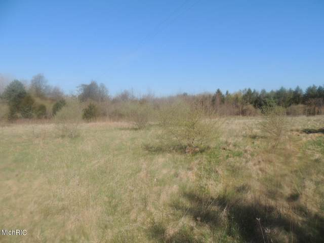 Blue Star Highway Lot B, Fennville, MI 49408 (MLS #21012973) :: Your Kzoo Agents