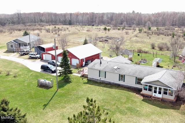 2803 Grant Road, Remus, MI 49340 (MLS #21013012) :: Your Kzoo Agents