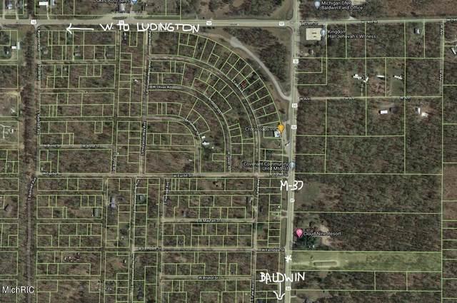 3390 S M 37, Baldwin, MI 49304 (MLS #21013063) :: Keller Williams Realty   Kalamazoo Market Center