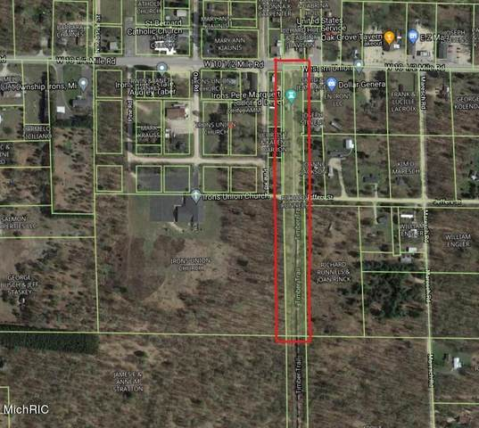 VL-W W 10 1/2 Mile Rd Road, Irons, MI 49644 (MLS #21013241) :: Your Kzoo Agents