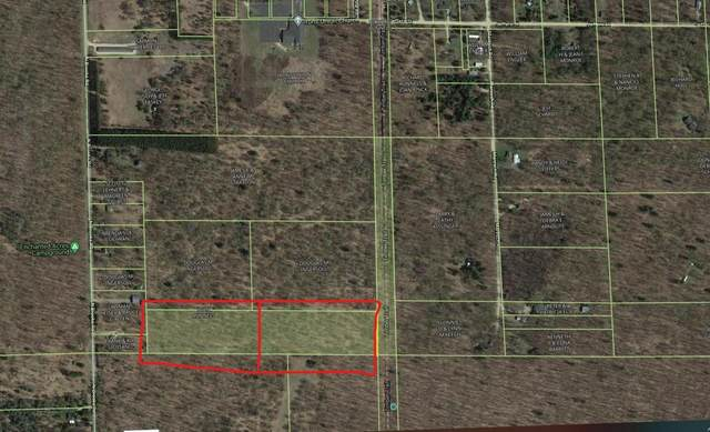 VL N Brooks Rd Road, Irons, MI 49644 (MLS #21013244) :: Your Kzoo Agents