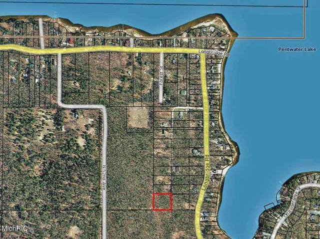Mohawk Street, Pentwater, MI 49449 (MLS #21013394) :: Deb Stevenson Group - Greenridge Realty