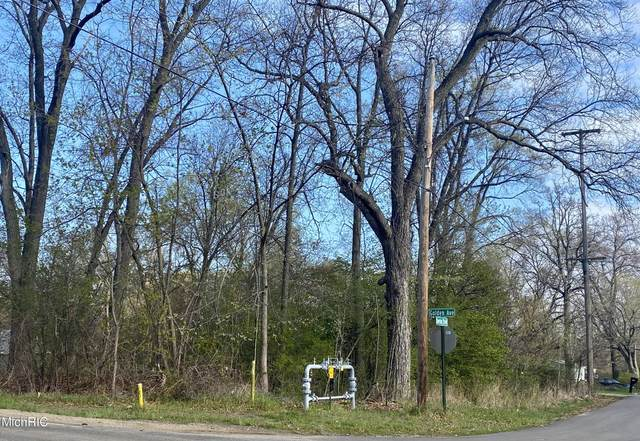 V/L Golden Ave Lot #4, Battle Creek, MI 49015 (MLS #21013414) :: Your Kzoo Agents