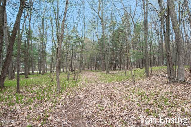 Parcel A Shady Lane, Greenville, MI 48838 (MLS #21013443) :: Your Kzoo Agents